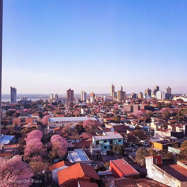 #Invierno de #Paraguay #landscape